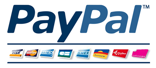 Płatności PayPal w Pagemaster